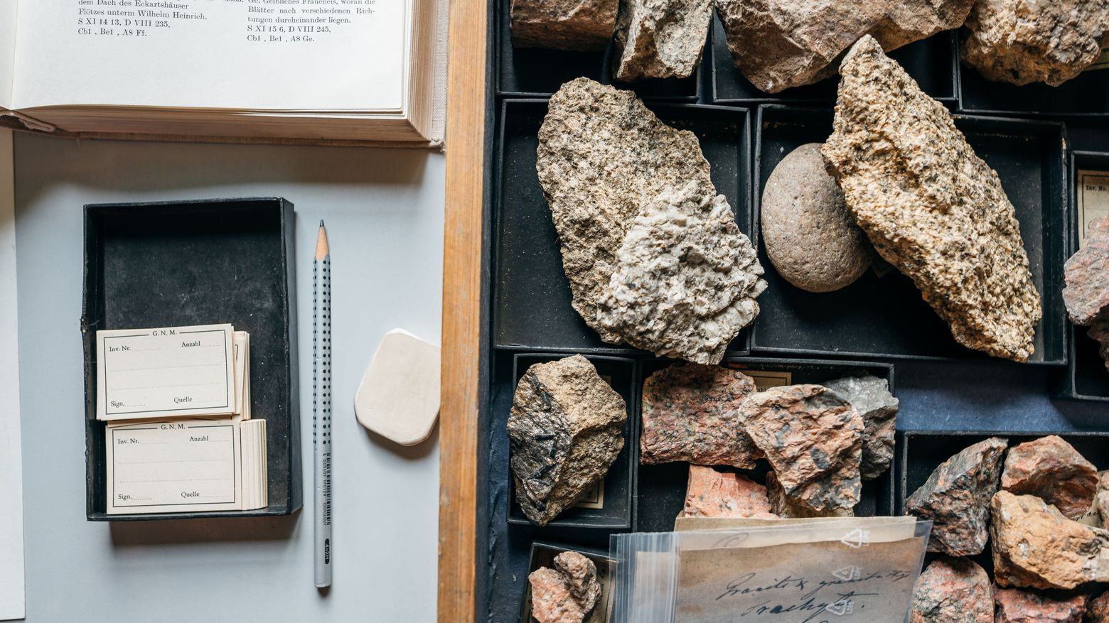 View inside a drawer of one of Goethe's mineral cabinets